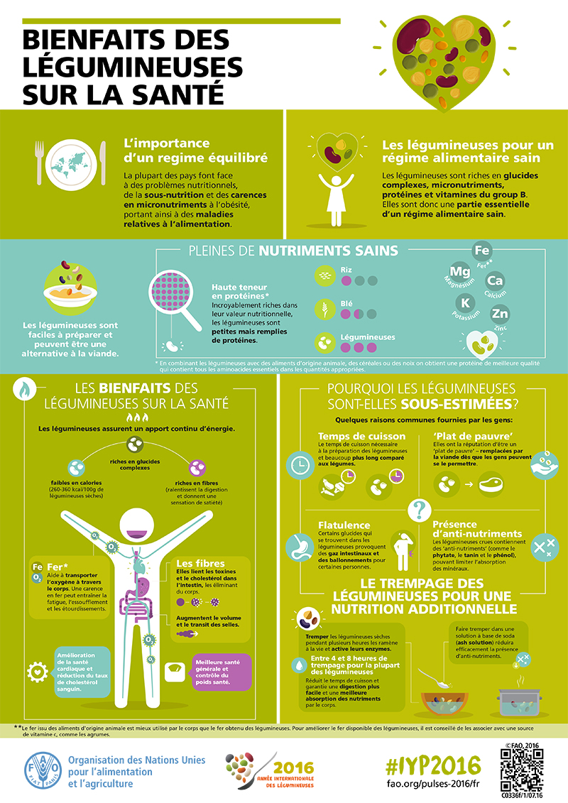 web_FAO-Infographic-IYP2016-3-Health Benefits of Pulses-hight-re